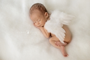 Newborn angel photograph
